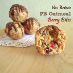 Peanut Butter Oatmeal Berry Bites